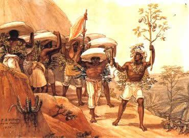 O café reorganizou o cenário econômico brasileiro do século XIX e XX.