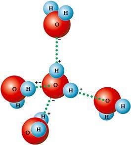 A molécula de Água