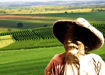 A Lei de Terras retardou a formação de uma classe de pequenos e médios proprietários no Brasil.