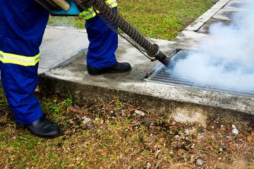 O controle do  mosquito-da-dengue com inseticidas é uma das armas disponíveis contra a doença