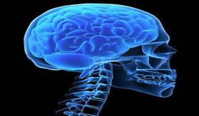 O tumor pode ocorrer em qualquer parte do cérebro.