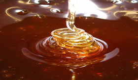 Mel de abelhas contém frutose e glicose.