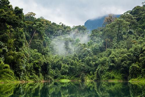 Nas regiões de clima equatorial, é comum encontrar florestas densas e intensa rede hidrográfica