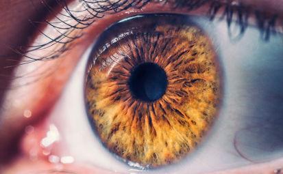 Quais são os limites da visão humana?