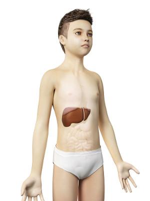 A Síndrome de Reye afeta crianças e adolescentes e ataca diretamente o fígado