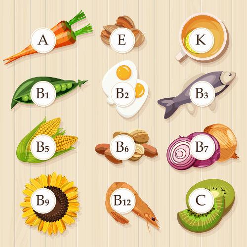 As vitaminas podem ser adquiridas por meio de uma alimentação saudável