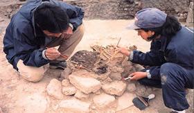 Carbono 14 desvenda a idade de fósseis.