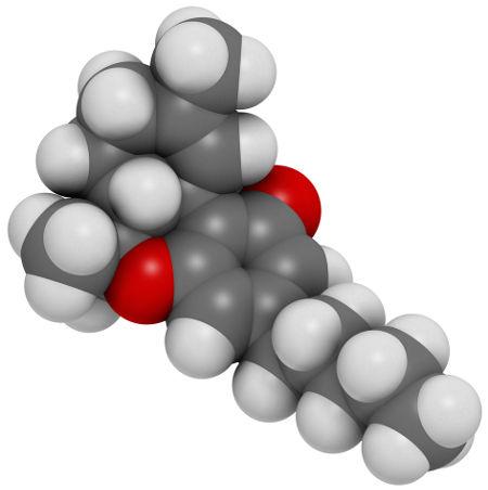 Representação dos átomos presentes na molécula de THC
