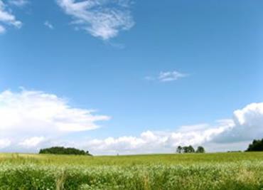 Durante o dia a cor azul é absorvida pelas partículas de ar.