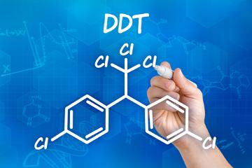 O DDT é um importante exemplo de substância que ocasiona a bioacumulação