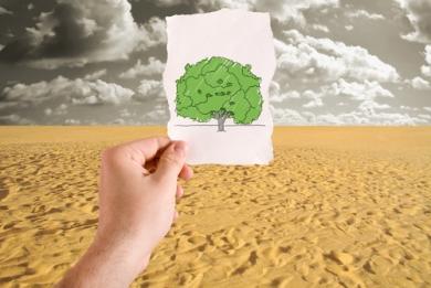 A desertificação transforma as paisagens, a natureza e as práticas humanas