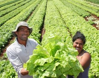 Pequenos agricultores do Brasil