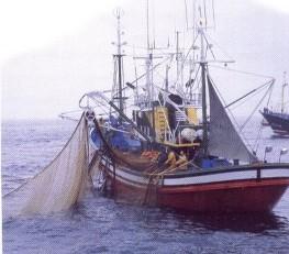 A atividade pesqueira no mundo