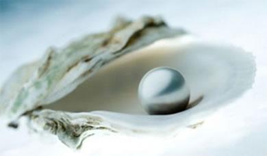 Somente as ostras são capazes de formarem as pérolas