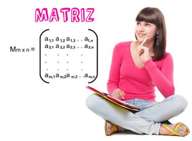 Em uma matriz, os elementos estão dispostos em linhas e colunas.