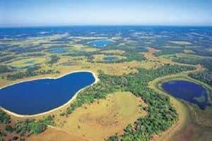 O Pantanal tem como principal característica sua capacidade de inundação.