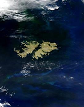 Imagem de satélite das Ilhas Malvinas.