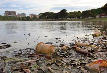 A água poluída pode causar doenças, sendo, nesse caso, chamada de água contaminada