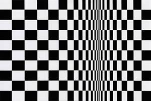 """Movement in Squares"" de Bridget Riley."