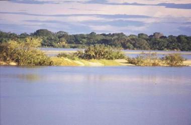 O Cerrado e a água no Brasil