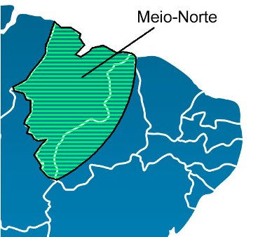 O Meio-norte está localizado na transição entre a sub-região do Sertão e a região Norte