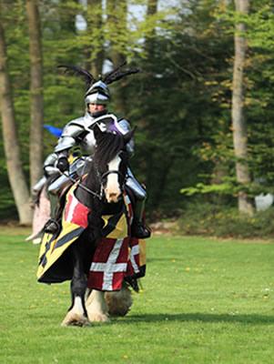 Cavaleiro medieval*