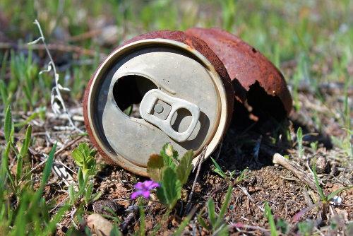 Decomposição de alguns resíduos pode demorar centenas de anos