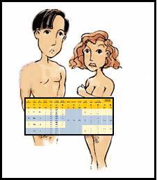 Calculando o período fértil através da tabelinha