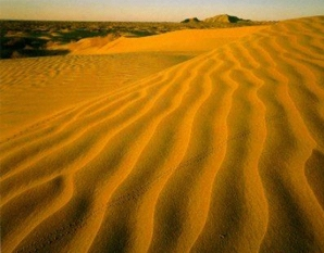 A situação do processo de desertificação