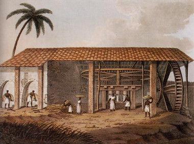 A vida em torno dos engenhos de açúcar foi um dos principais temas da obra de José Lins do Rego
