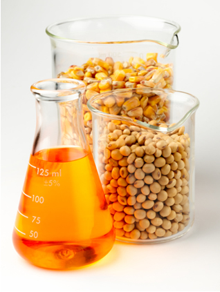 O biodiesel pode ser obtido através do óleo de soja ou de milho