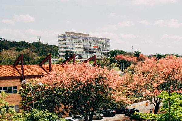 Campus Pampulha é o maior da UFMG / Crédito: Lucas Braga UFMG