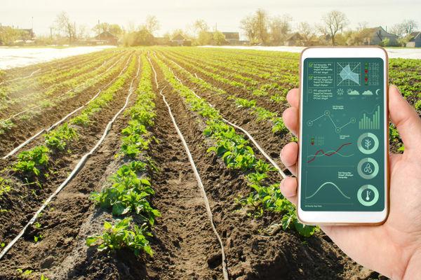 Novas tecnologias ajudam a ampliar o mercado de agroindústria