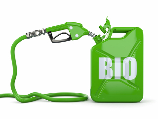 Estude sobre os principais biocombustíveis usados hoje, como o biodiesel e o biogás