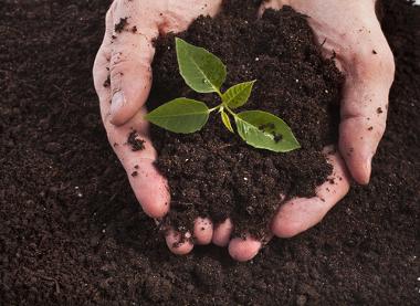 A apropriação e o uso dos solos podem ser um tema presente do Enem