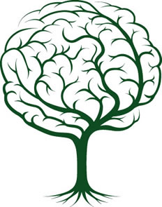 A gramática na prova de Língua Portuguesa no Enem não está desvinculada do texto, é como o tronco, a folha e a raiz da árvore, um está ligado ao outro