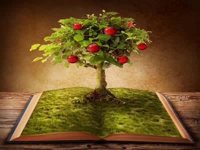 Aliar interpretação de textos com os conteúdos estudados nos livros é um caminho fértil para se dar bem no Enem