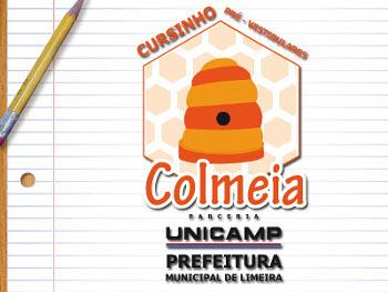 Projeto trabalha no intuito de auxiliar estudantes de baixa renda da cidade de Limeira