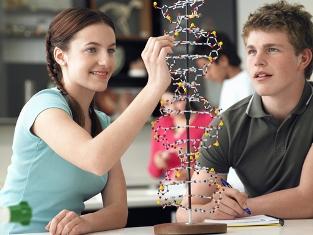 Temas como ecologia, saúde humana, fisiologia e genética são muito cobrados em provas do Enem
