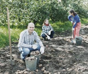 Uma das possibilidades de atuação do Economista Doméstico é junto a projetos de agricultura familiar.