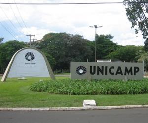 Unicamp conta com quase 10 mil funcionários